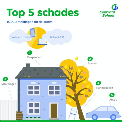 Infographic top 5 schades