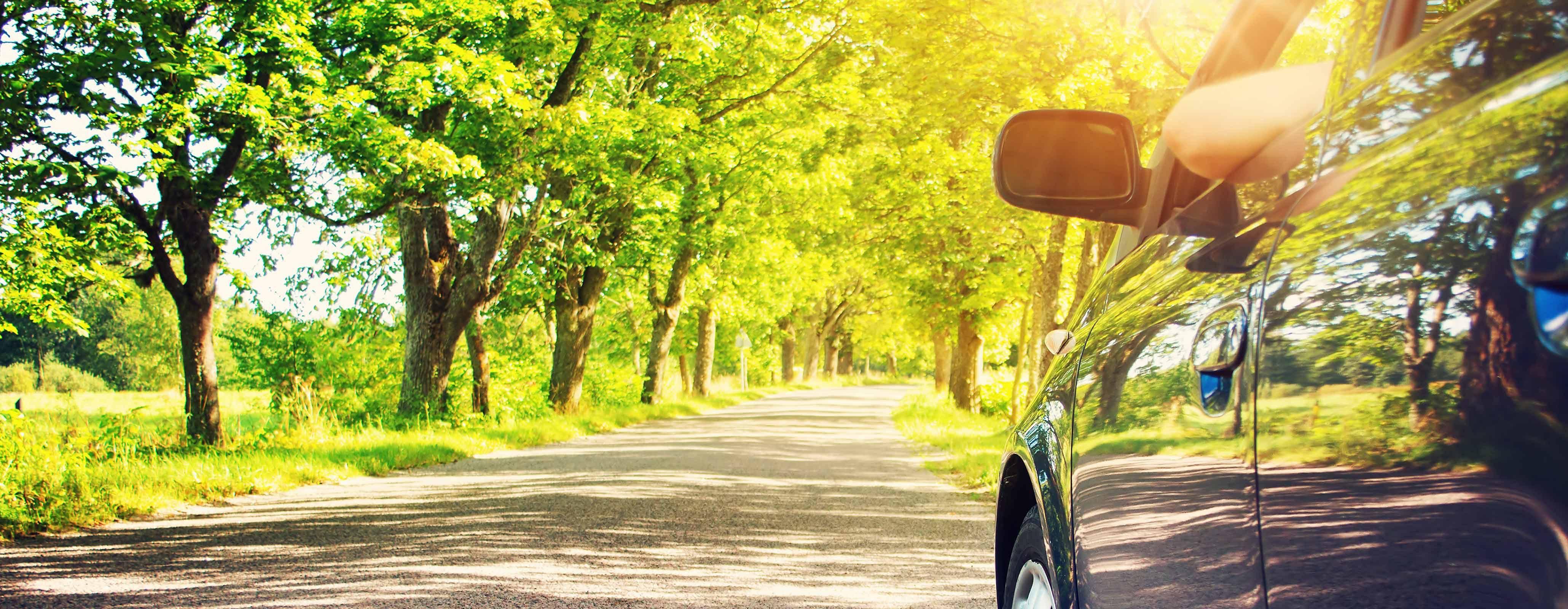 Auto in een groene omgeving