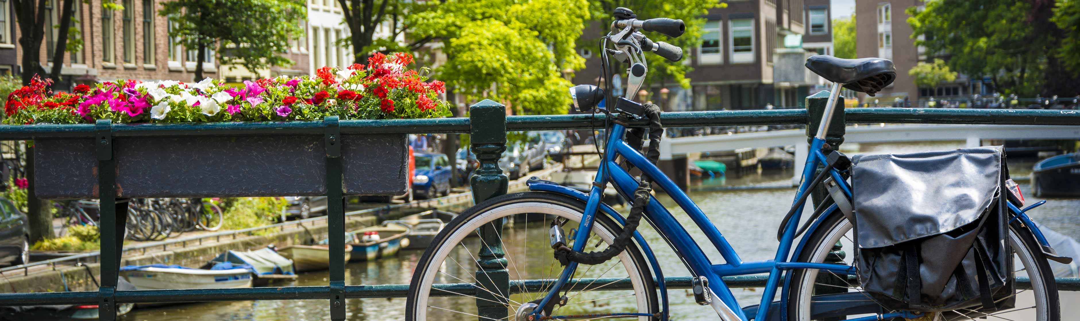 Geparkeerde fiets met slot