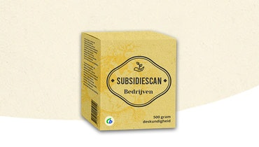 Subsidiescan